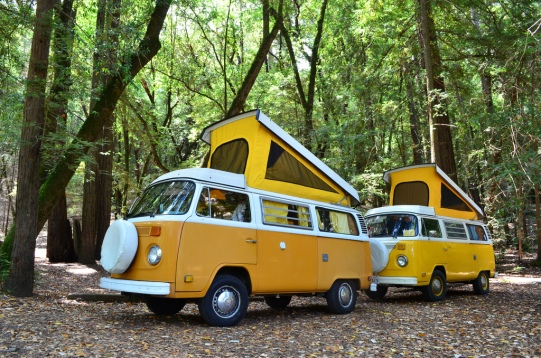 Late Bay campervans
