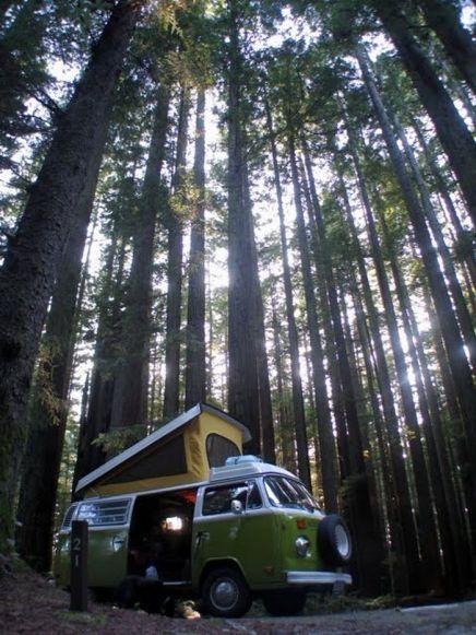 A bay camper in the wood.