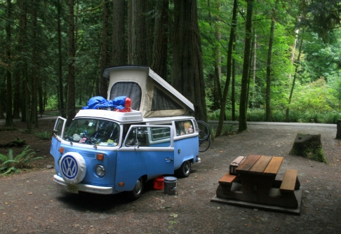 A bay campervan in a wood.